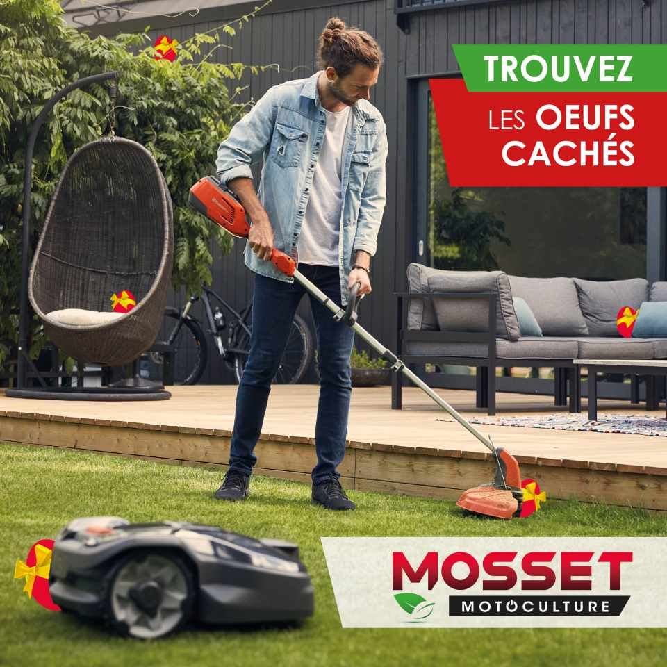 MOSSET paques oeufs